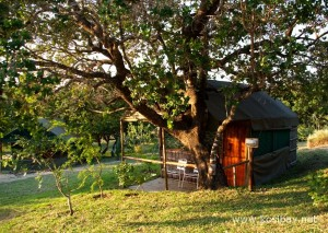 Kosi Bay accommodation rustic reed chalets