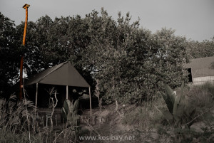 solar powered chalets at kosi bay amangwane